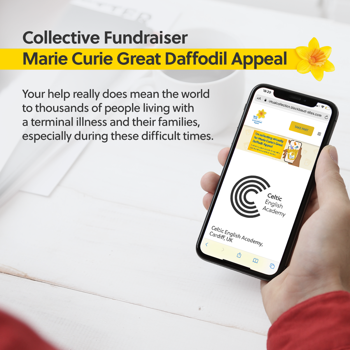 Marie Curie Collective Fundraiser Daffodil Appeal